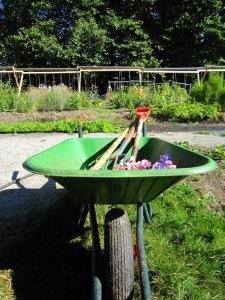 urban farm tools
