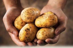 Vegetable of the Week - Potatoes